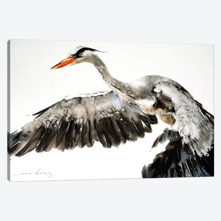 Stork in Flight I Canvas Print #LIM95} by Soo Beng Lim Art Print