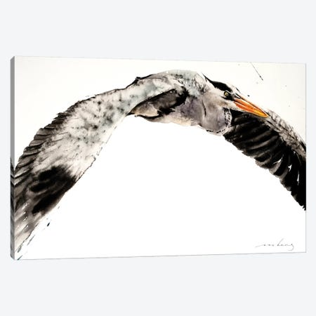 Stork in Flight II Canvas Print #LIM96} by Soo Beng Lim Canvas Print