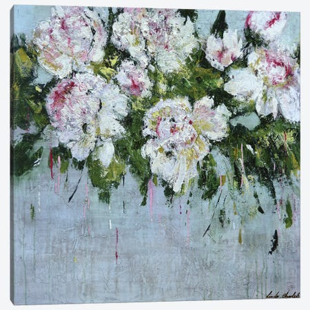 White Peonies Canvas Print #LIN46} by Linda Charles Art Print