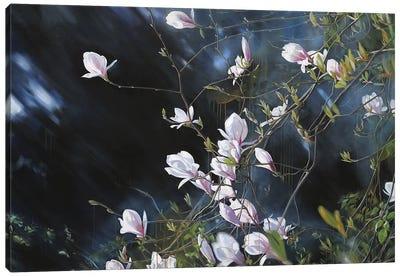 Florescence Canvas Art Print