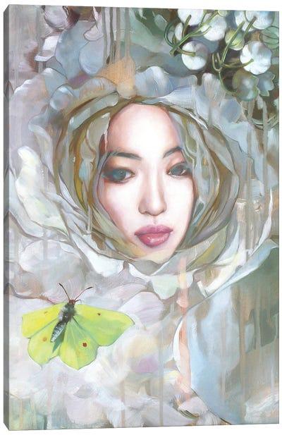 A Dream Within A Dream Canvas Art Print