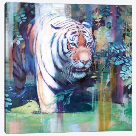 Panthera Tigris Altaica Canvas Print #LIO41} by Lioba Brückner Canvas Art Print
