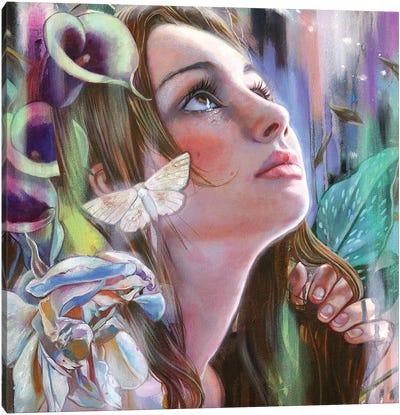 Visions Canvas Art Print