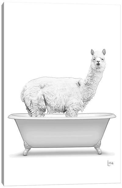 Adult Llama In The Bath Bw Canvas Art Print