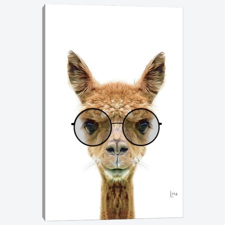 Llama With Black Glasses Canvas Print #LIP204} by Printable Lisa's Pets Canvas Print