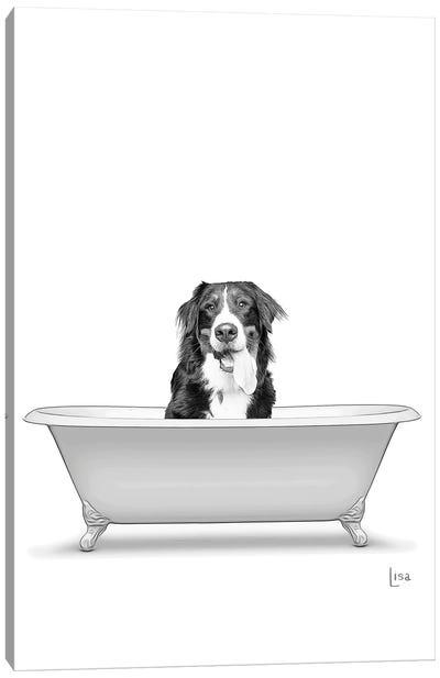Bernese Mountain Dog In Bathtub Canvas Art Print
