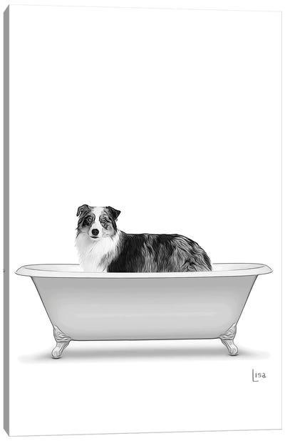 Australian Shepeherd Dog In Bathtub Canvas Art Print