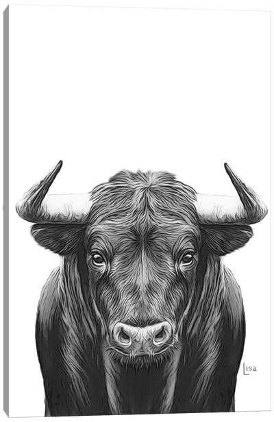 Bull Bn Canvas Art Print