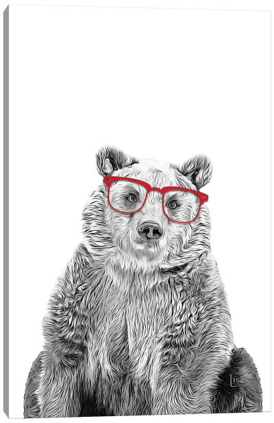 Bear With Red Glasses Canvas Art Print