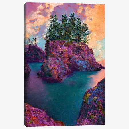 Boardman State Park Canvas Print #LIR10} by Lisa Robinson Canvas Art Print