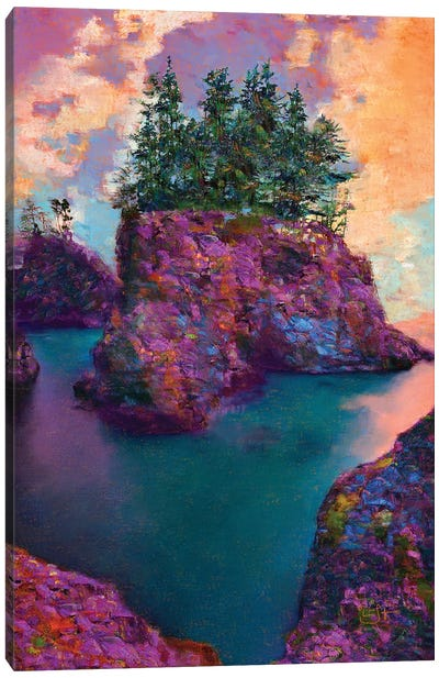Boardman State Park Canvas Art Print