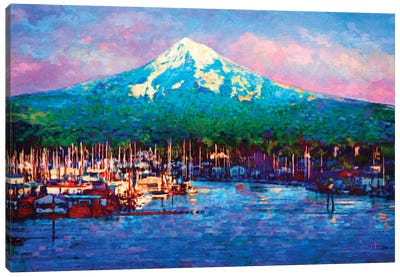 Cascade Glory Canvas Art Print