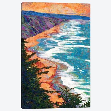Coastline Canvas Print #LIR18} by Lisa Robinson Canvas Art Print