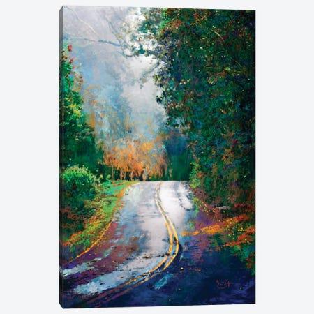 A Curve in the Road Canvas Print #LIR1} by Lisa Robinson Canvas Art Print