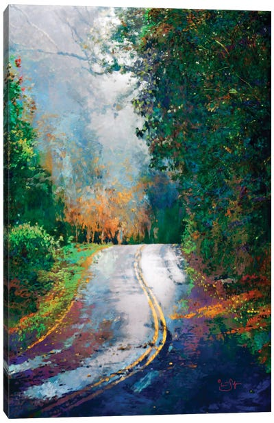 A Curve in the Road Canvas Art Print