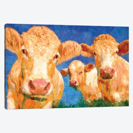 Curious Canvas Print #LIR21} by Lisa Robinson Canvas Wall Art
