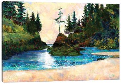 Dead Man's Cove Canvas Art Print