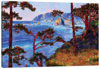 Haystack Through the Trees Canvas Art Print
