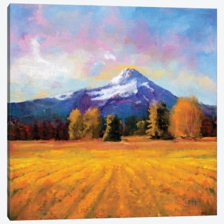 Hood on Gold Canvas Print #LIR33} by Lisa Robinson Canvas Print