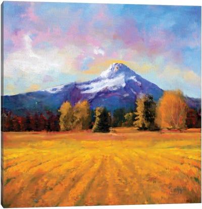 Hood on Gold Canvas Art Print