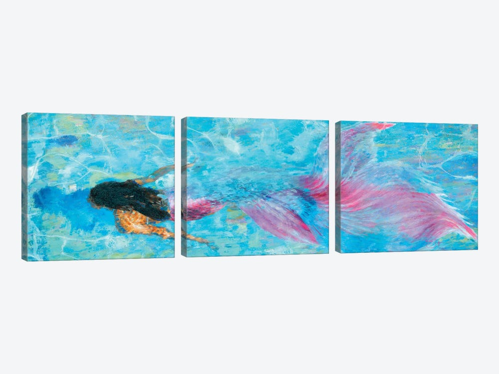 Mermaid by Lisa Robinson 3-piece Art Print