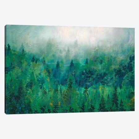 Mist II Canvas Print #LIR40} by Lisa Robinson Canvas Art