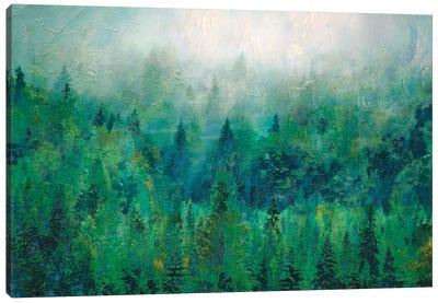 Mist II Canvas Art Print