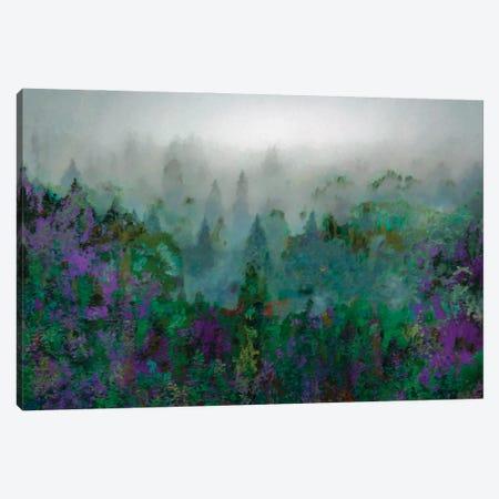 Mist IV Canvas Print #LIR41} by Lisa Robinson Canvas Wall Art