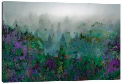Mist IV Canvas Art Print