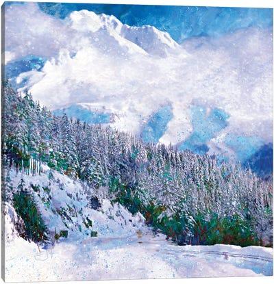 New Snow Canvas Art Print