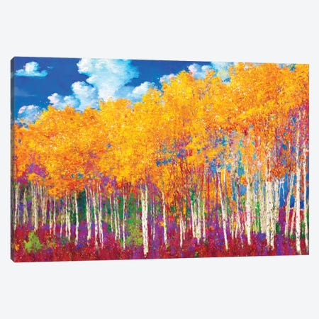 Aspens in Fall Canvas Print #LIR4} by Lisa Robinson Canvas Artwork