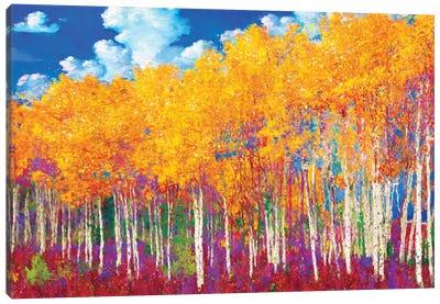 Aspens in Fall Canvas Art Print