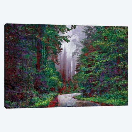 Redwoods I Canvas Print #LIR51} by Lisa Robinson Canvas Print