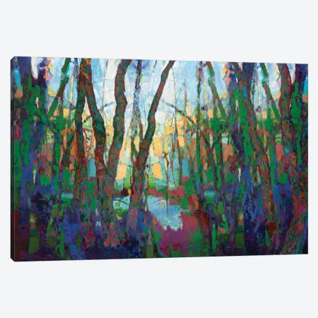 Trees Canvas Print #LIR67} by Lisa Robinson Art Print