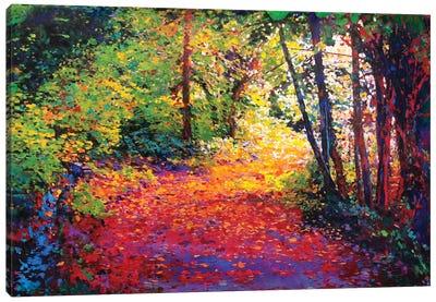 Beckoning Entry Canvas Art Print