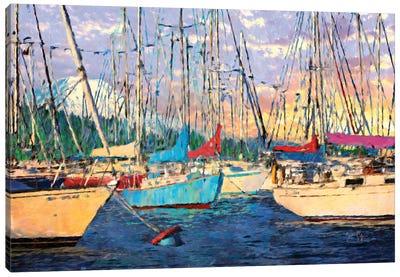 Before the Sail Canvas Art Print