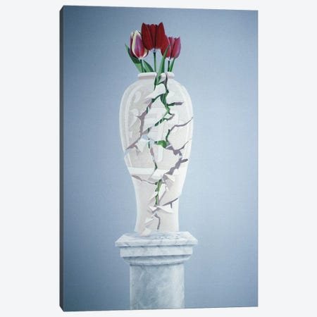 Cracked Urn Canvas Print #LIS11} by Lincoln Seligman Canvas Art