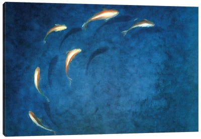 Goldfish Pool Canvas Art Print