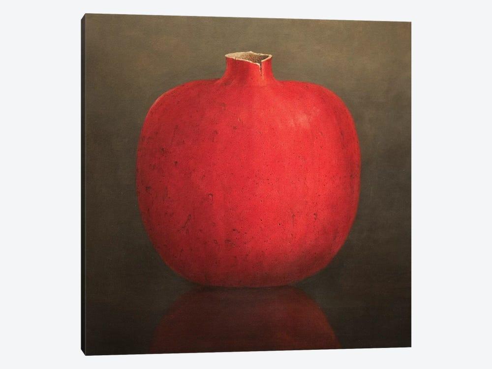 Pomegranate by Lincoln Seligman 1-piece Canvas Artwork