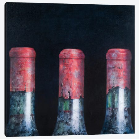 Three Dusty Clarets Canvas Print #LIS27} by Lincoln Seligman Canvas Artwork