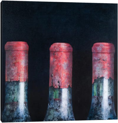 Three Dusty Clarets Canvas Art Print