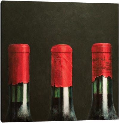 Three Wines Canvas Art Print