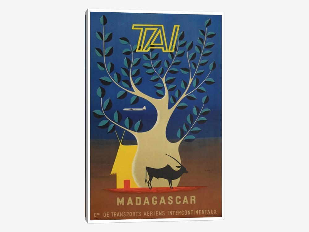 Madagascar - TAI Airlines 1-piece Canvas Art