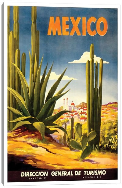 Mexico II Canvas Art Print