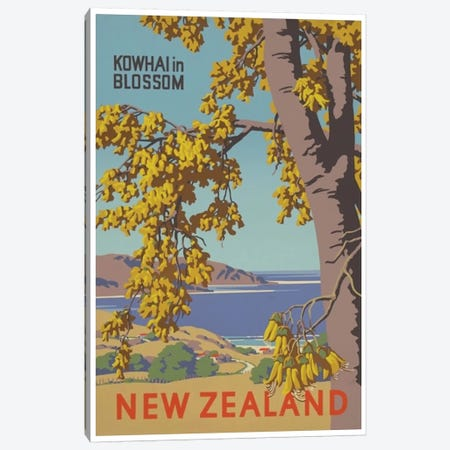 New Zealand: Kowhai In Blossom Canvas Print #LIV238} by Unknown Artist Canvas Print