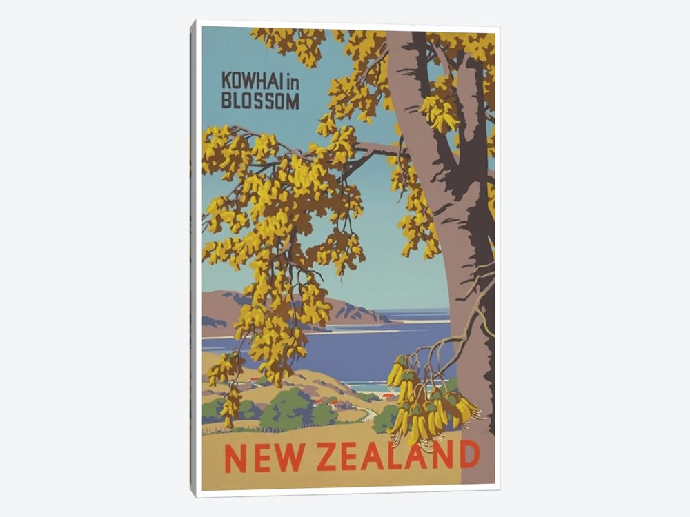 New Zealand: Kowhai In Blossom by Unknown Artist 1-piece Art Print
