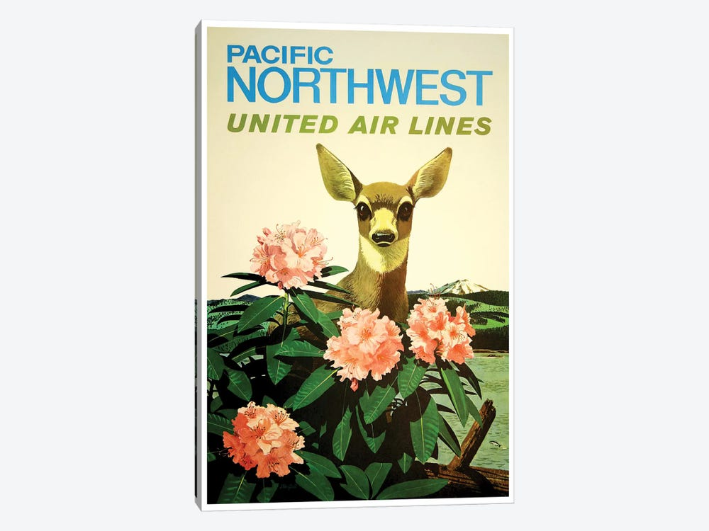 Pacific Northwest United Air Lines by Unknown Artist 1-piece Canvas Wall Art