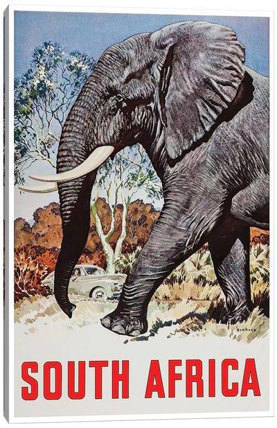 South Africa - Wildlife Canvas Print #LIV310