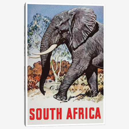 South Africa - Wildlife 3-Piece Canvas #LIV310} by Unknown Artist Canvas Artwork