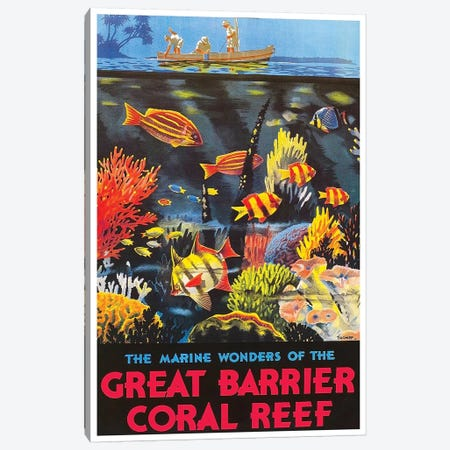 The Marine Wonders Of The Great Barrier Coral Reef Canvas Print #LIV334} by Unknown Artist Canvas Art Print
